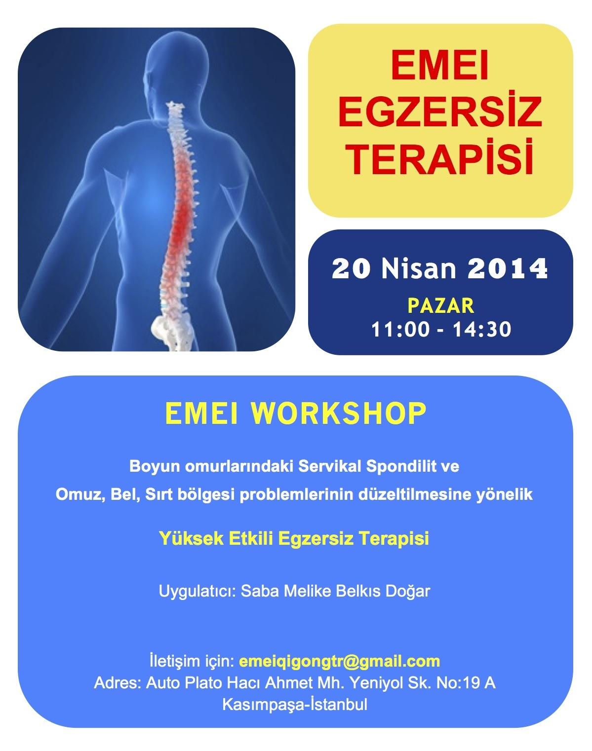 emei qigong workshop6