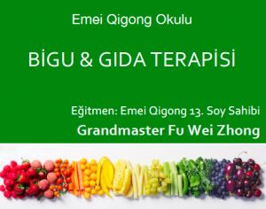 bigu gıda terapisi