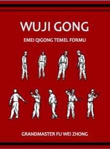 wuji gong book