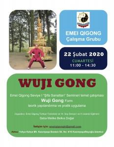 wuji gong workshop şubat 2020