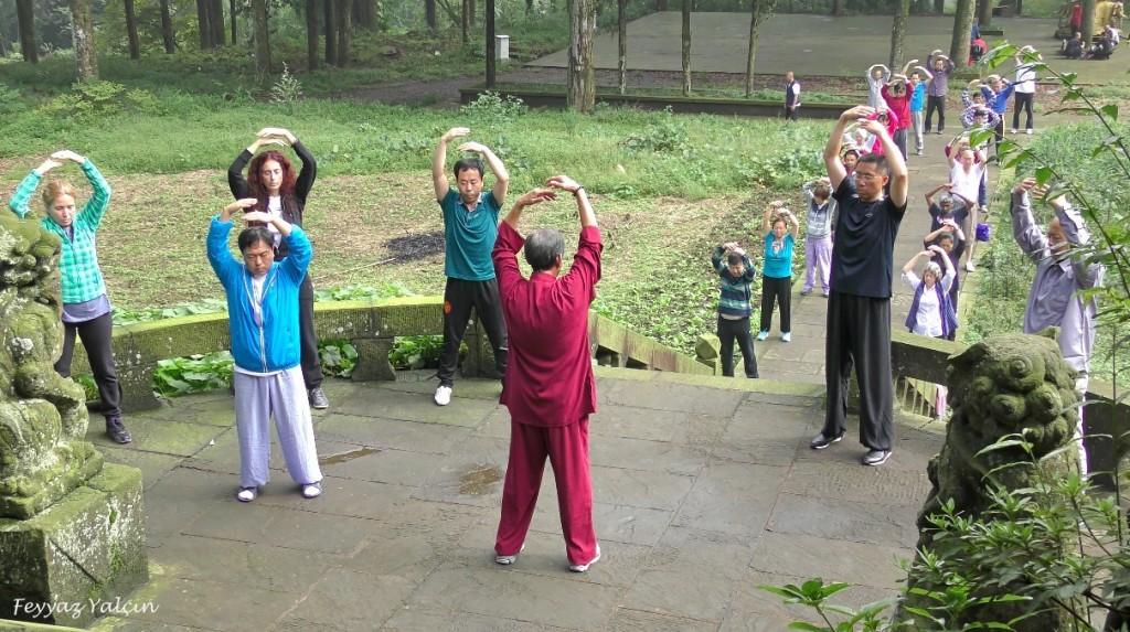 emei mountain wuji gong