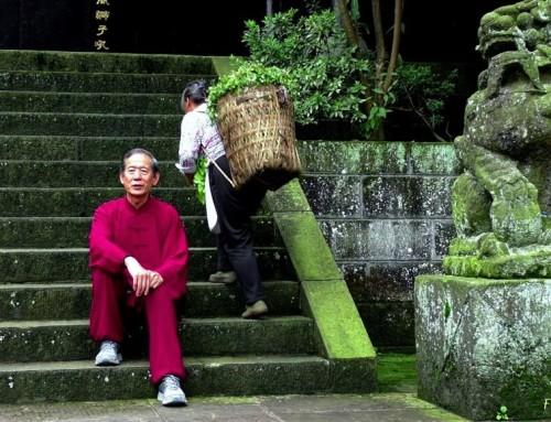 """08-11 Aralık , Emei Qigong """"Bi Gu & Gıda Terapisi"""" Eğitimi"""