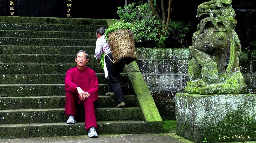 Grandmaster Fu - Zhong Feng